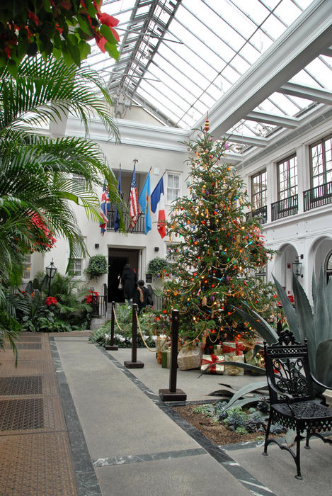 Christmas tree, flags, greenhouse, holiday lights, ornament, room, trees