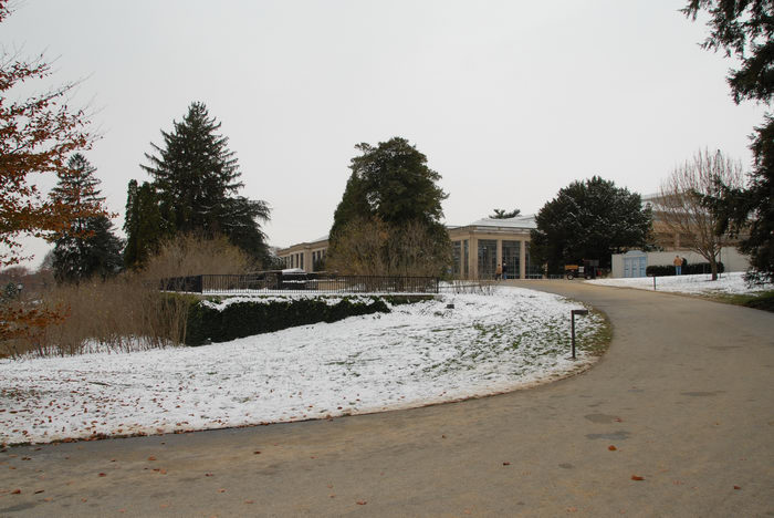 building, path, snow, trees, walkway