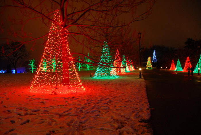 lights, nighttime, ornament, path, snow, walkway