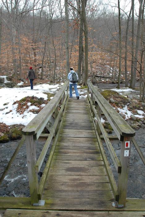 bridge, friends, road, snow, stream, trail, trees, water, woods