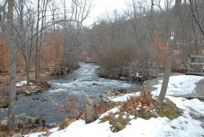 snow, stream, trees, water, woods