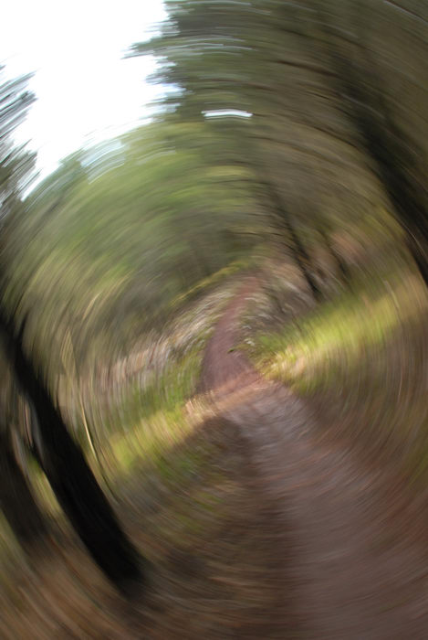 blurred, grass, path, spin, trail, woods