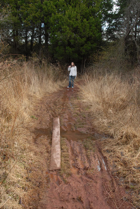 Jaimi, ground cover, mud, path, stream, trail, trees, water, woods