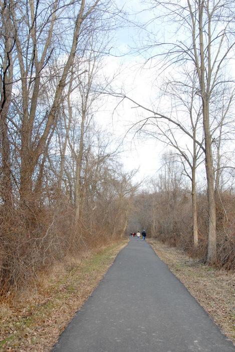 bike path, path, people, road, trail, trees