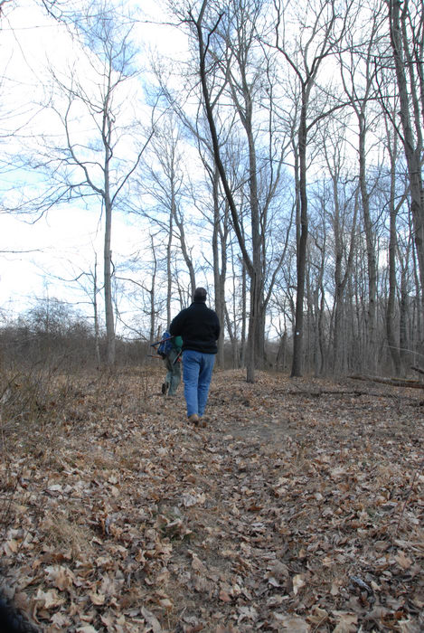 NJ Trail Association, people, trail, trail maintenance, woods