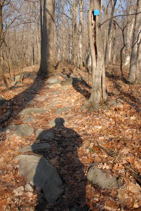 my shadow, rocks, trail marker, woods