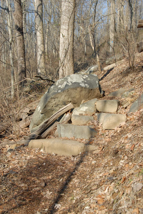 rock staircase, rocks, trail, woods