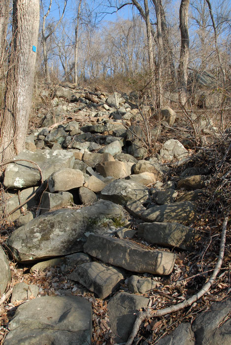 rock staircase, rocks, trail marker, woods