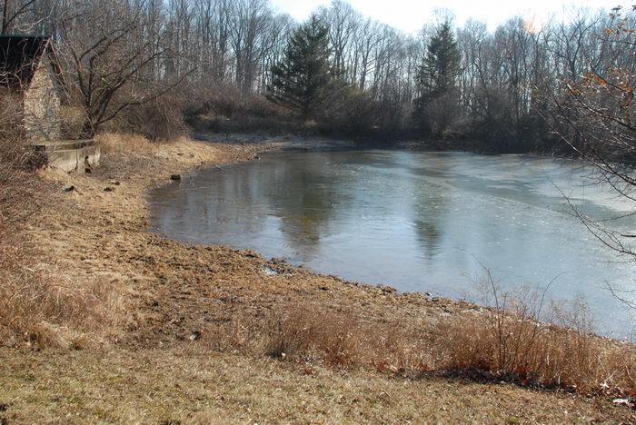 field, pond