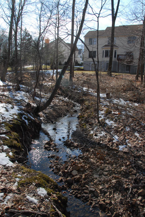 house, snow, stream, water, woods