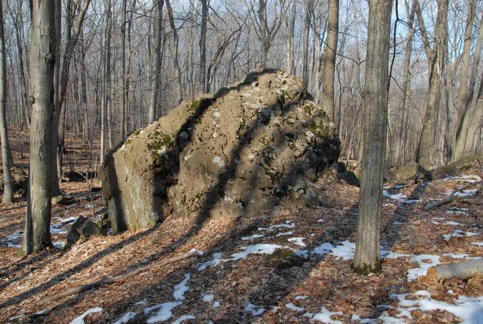 rocks, snow, woods