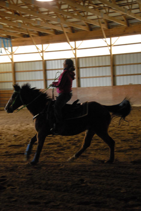 Danielle, arena, horse