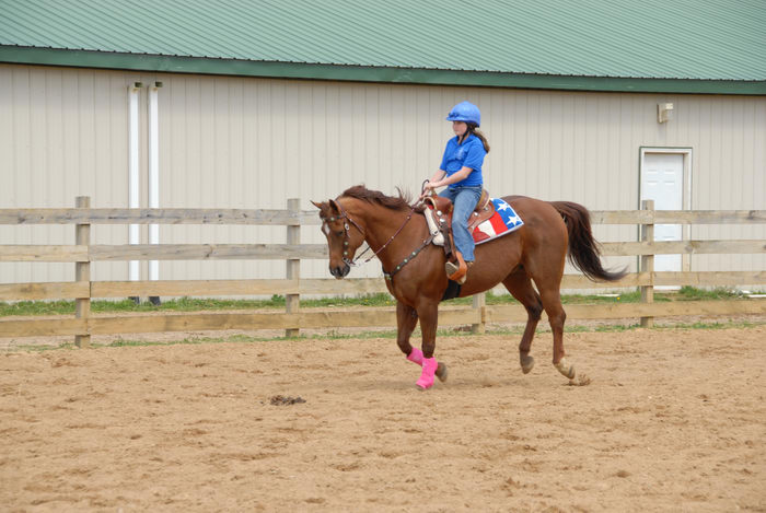 barn, fence, horse