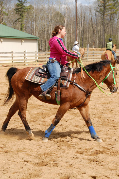 Danielle, barn, fence, horse