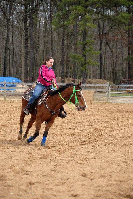 Danielle, fence, horse