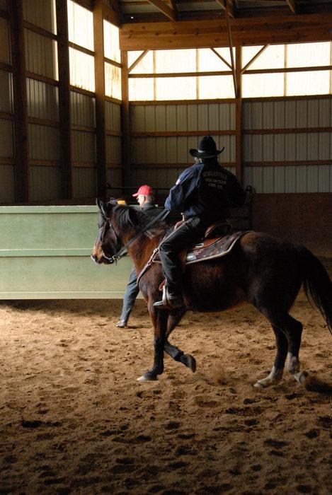 arena, horse