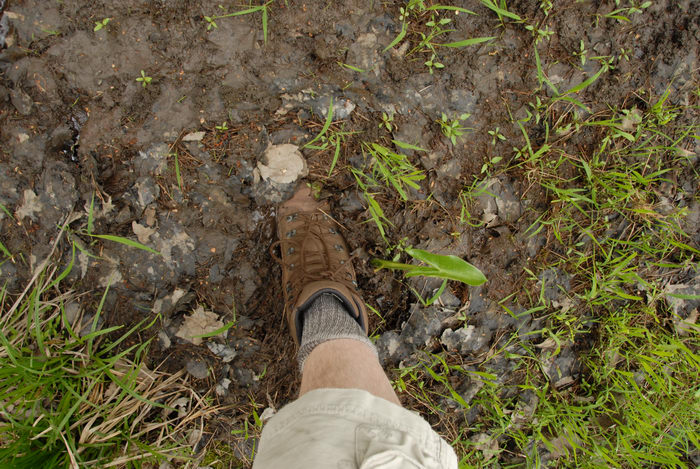 mud, shoe