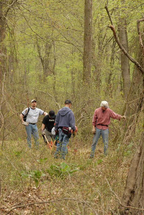 SMART, Trail Maintenance, ground cover, prickers, trees, woods