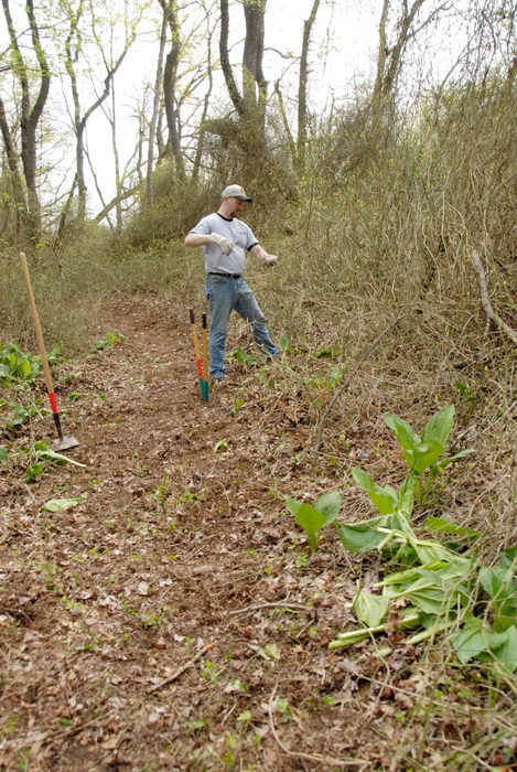 SMART, Trail Maintenance, ground cover, path, prickers, trail, trees, woods
