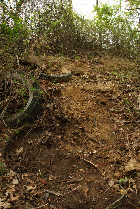 garbage, ground cover, path, prickers, trail, trees, woods