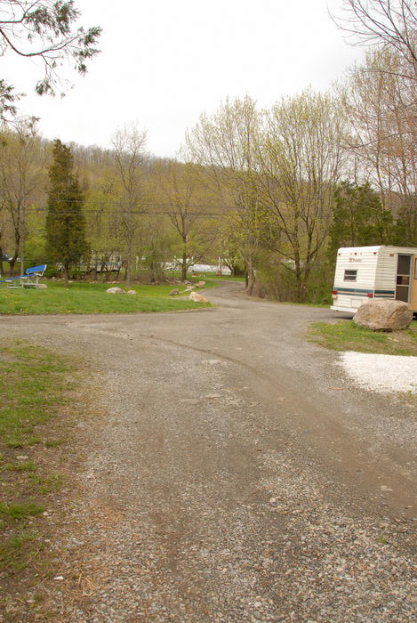 camper, grass, road, woods