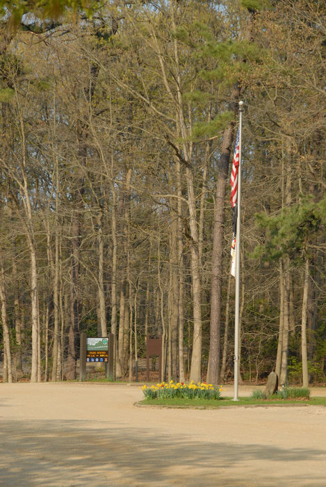 flag, parking, trees