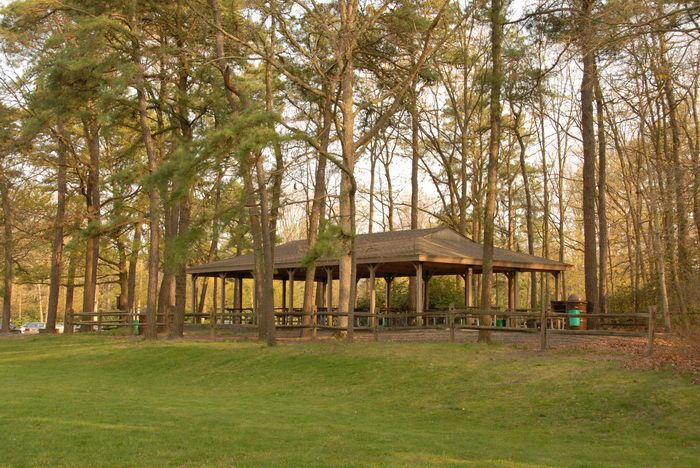 field, picnic shelter, trees
