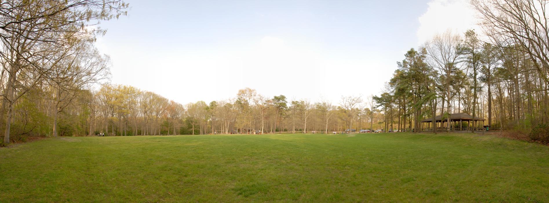 field, panoramic, trees