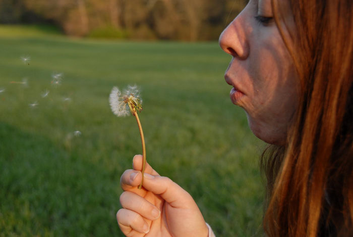 Jacki, blowing, dandelion, field, weeds