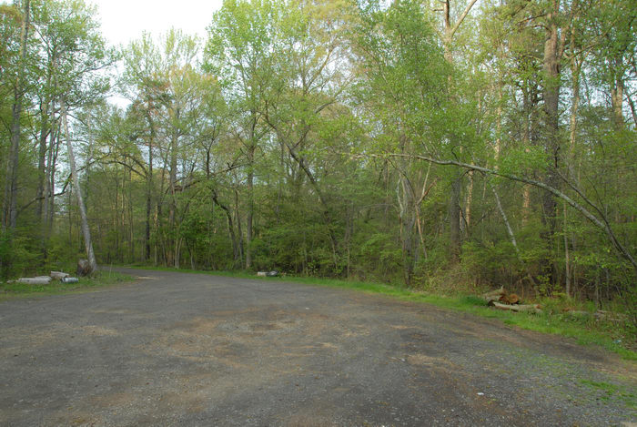 gravel, parking, trees, woods