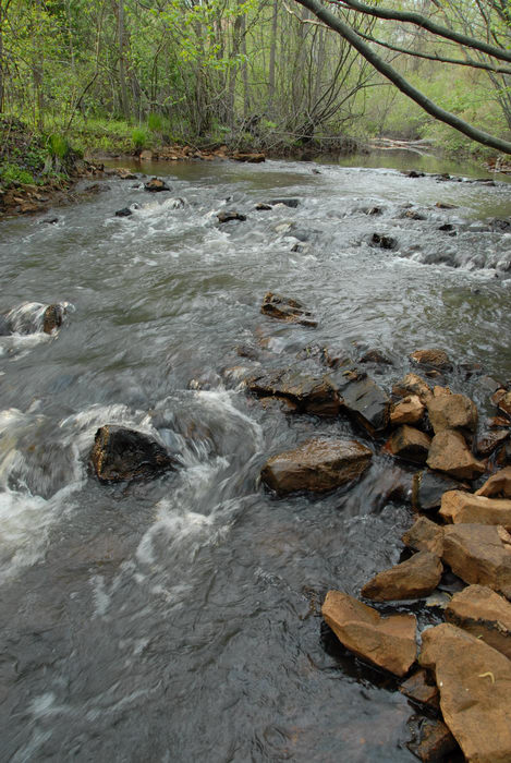 moving water, river, rocks, trees, woods