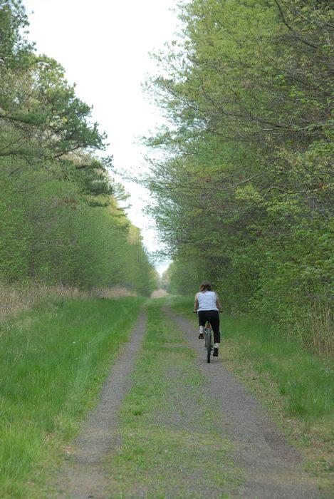 Jackie, bike, dirt road, mountain bike, path, trail, trees, woods