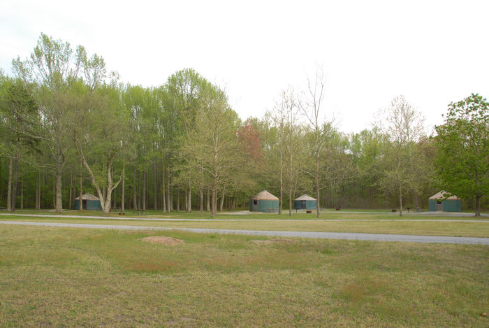 camping, paved, road, trees, woods, yurt