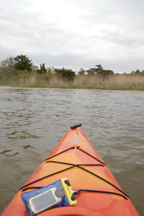 dry bags, kayak, reeds, water