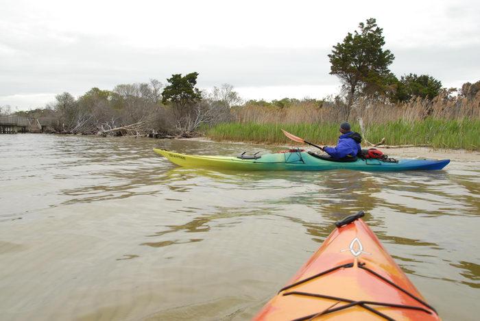 Rob, beach, kayak, reeds, water