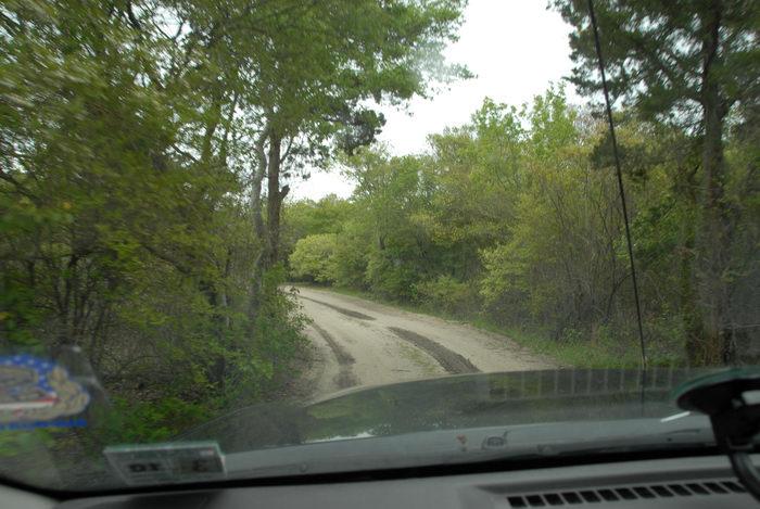 dash, dirt road, hood, trees