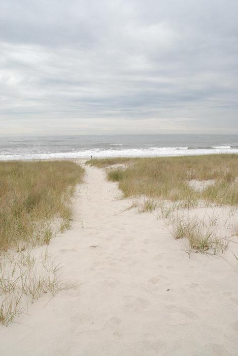 beach, ocean, path, sand, waves