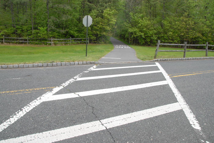 crossing, fence, grass, path, paved, road, trees