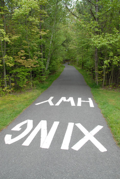 grass, path, paved, trees, xing hwy