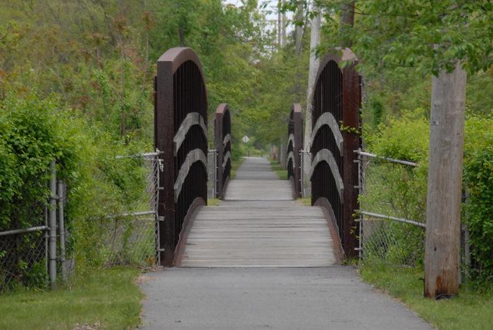 bridge, fence, grass, trees