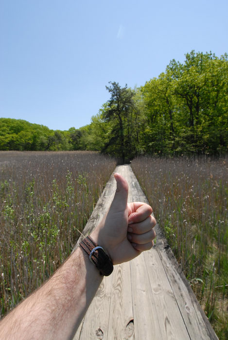 Thumbs across America, blue sky, boardwalk, trees