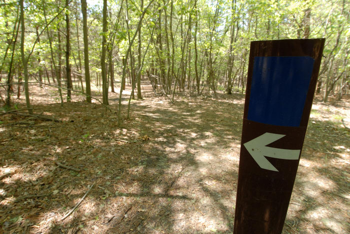 sign, trail, trail marker, trees, woods