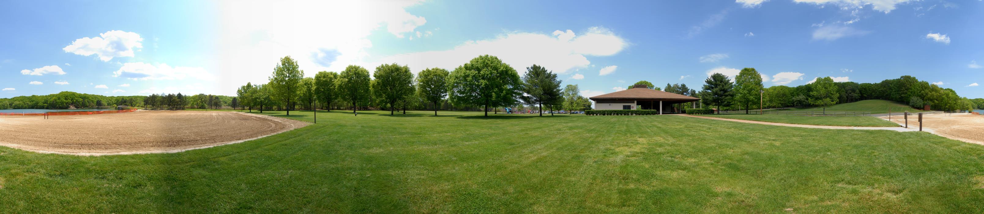 beach, blue sky, grass, panoramic, sand, trees