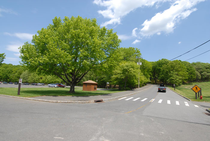 blue sky, grass, parking, road, trees