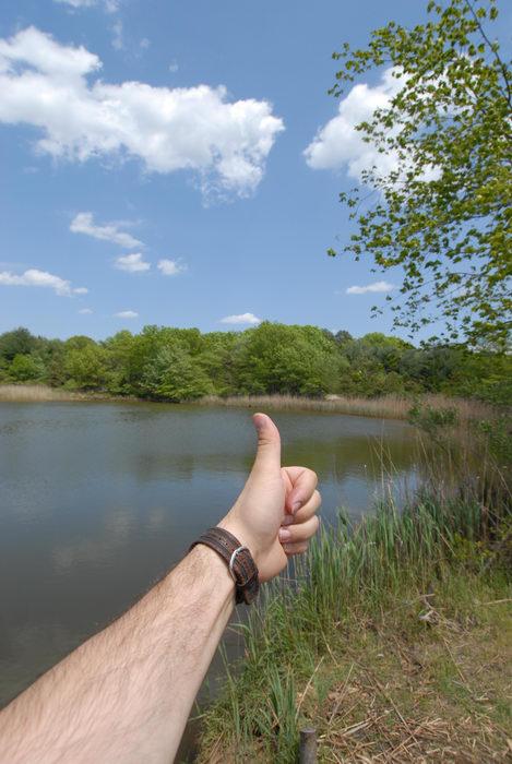 Thumbs across America, blue sky, trees, water