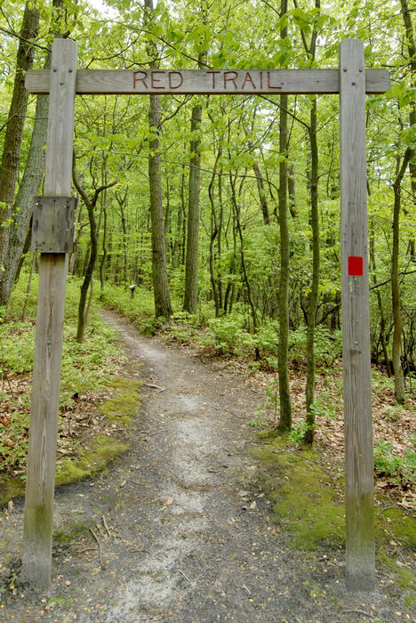 marker, path, sign, trail, trees, woods