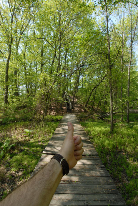 Thumbs across America, boardwalk, grass, trees