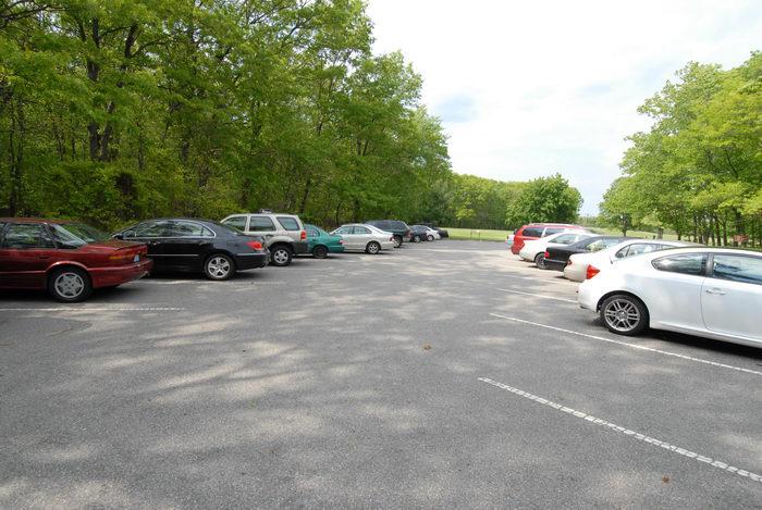 car, parking, trees