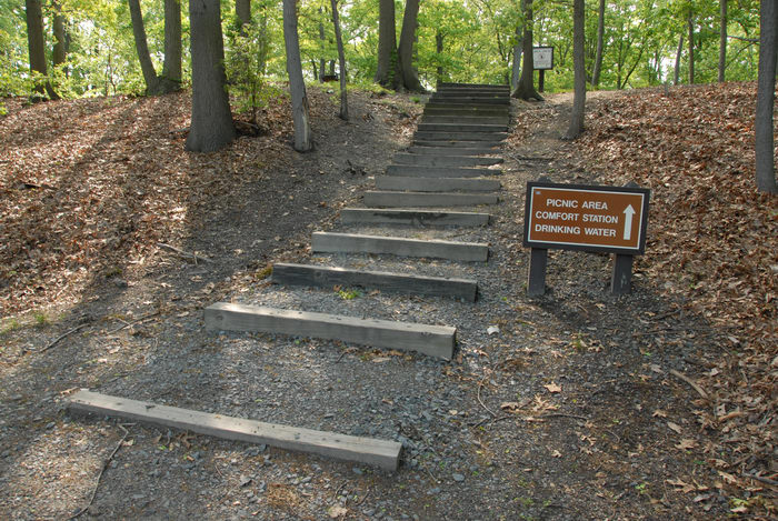 sign, stairs, trees, woods