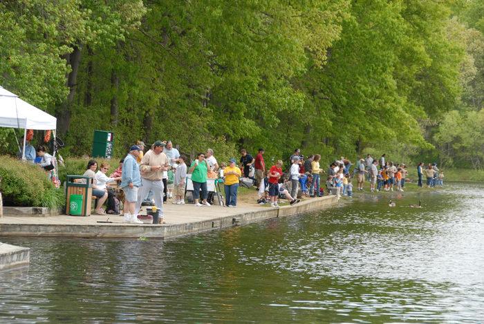 fishing, people, trees, woods